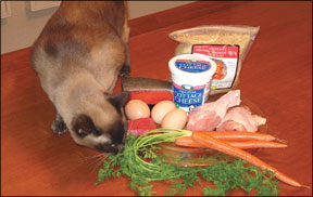 Homemade Cat Food Diet
