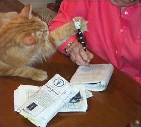 Documenting Your Cat's Behavior