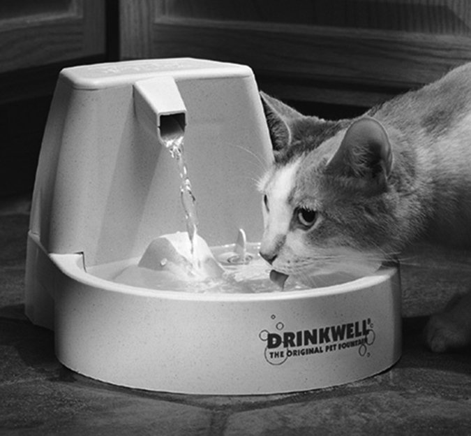 cat Drinkwell water fountain