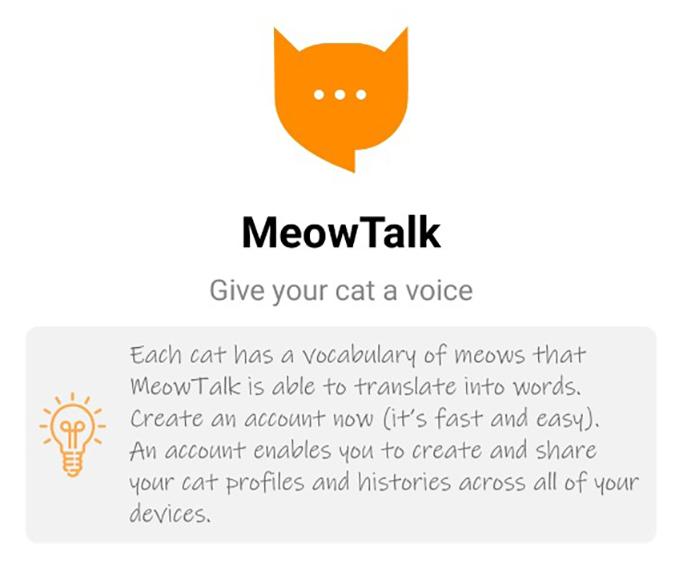 Meow Talk
