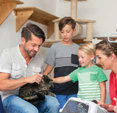 Adopting a pet involves the entire household.