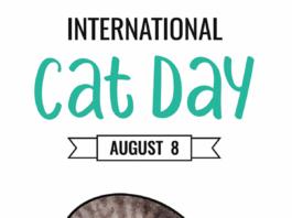 International Cat Day